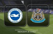VIDEO Brighton & Hove Albion 1 - 0 Newcastle United (Premier League) Highlights