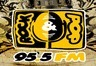 Rock and Pop 95.5 FM